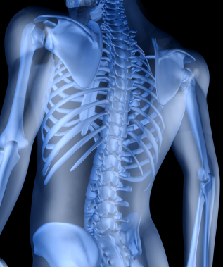Calcium nutrition and exercise | Hillcliff Personal Training North London - Barne